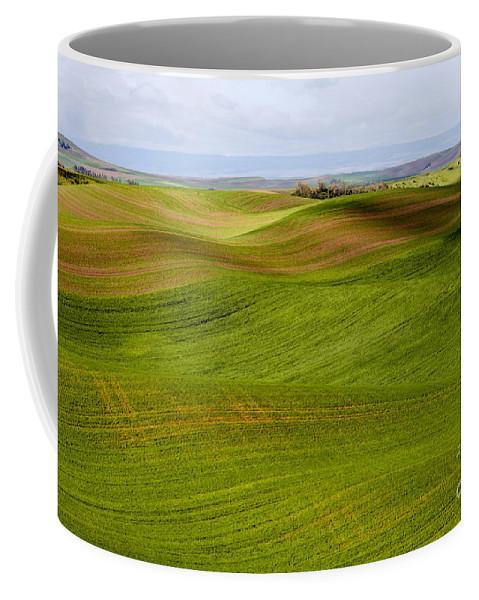 Palouse Area Coffee Mug featuring the photograph Rolling Idaho Farmland by Bob Phillips