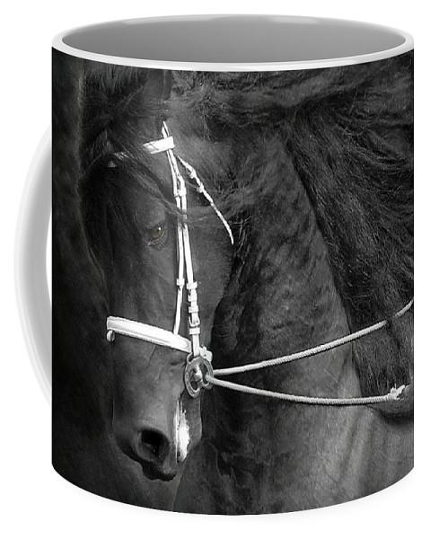 Friesian Coffee Mug featuring the photograph Romke 401 Long Line by Fran J Scott