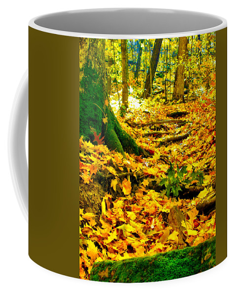 Fall Coffee Mug featuring the photograph Root Steps by Zafer Gurel