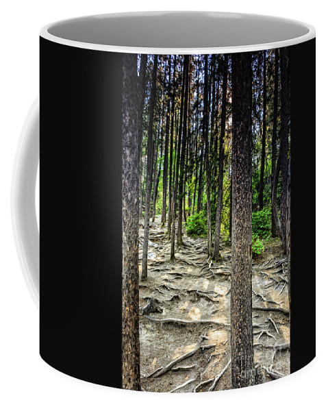 Roots Coffee Mug featuring the photograph Roots Of Trees by Viktor Birkus