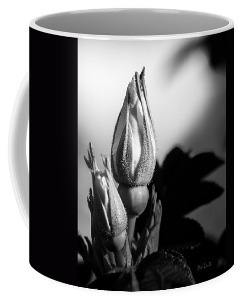 Flowers Coffee Mug featuring the photograph Rose Bud by Bob Orsillo
