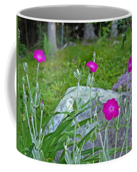 Rose Campion Coffee Mug featuring the photograph Rose Campion by MTBobbins Photography