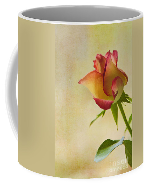 Art Coffee Mug featuring the photograph Rose by Veikko Suikkanen