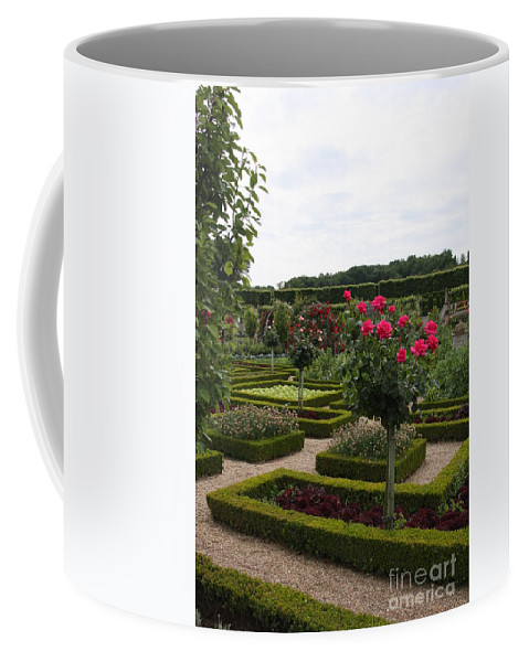 Roses Coffee Mug featuring the photograph Roses And Cabbage - Chateau Villandry by Christiane Schulze Art And Photography