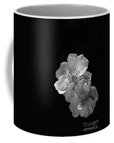 Roses On Black Coffee Mug featuring the photograph Roses On Black by Joy Watson