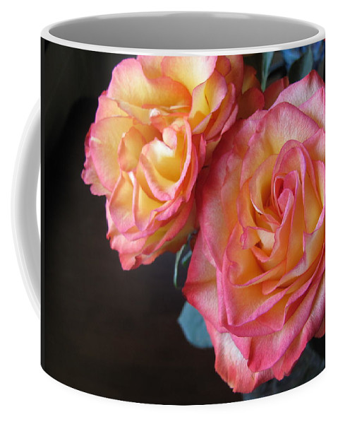 Flower Coffee Mug featuring the photograph Roses On Dark Background by Anita Burgermeister