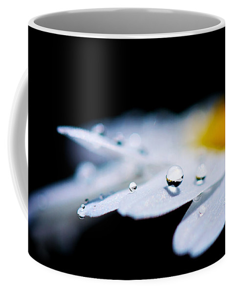 Water Drop Coffee Mug featuring the photograph Round Drops by Lisa Knechtel