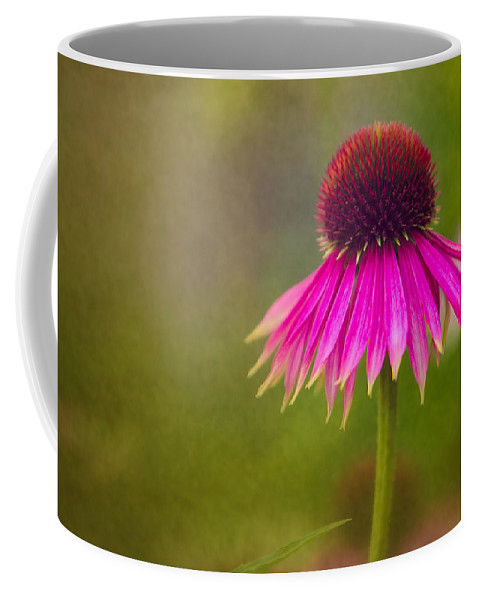 Coneflower Coffee Mug featuring the photograph Rudbeckia by Ludwig Riml