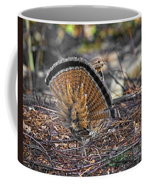 Ruffed Grouse Coffee Mug featuring the photograph Ruffed Grouse Rear Strut by Timothy Flanigan