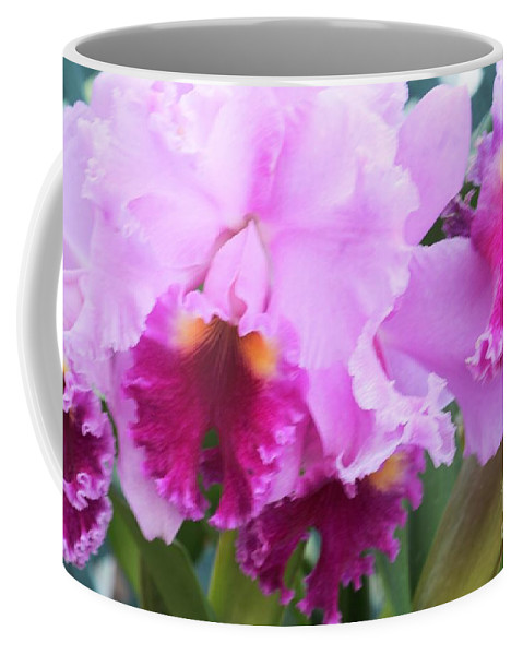 Orchid Coffee Mug featuring the photograph Ruffled Orchids by Kathleen Struckle