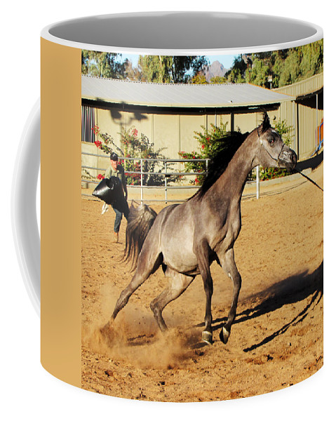 Horse Coffee Mug featuring the photograph Running Roan by C H Apperson