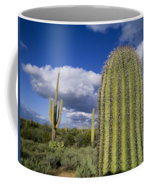 Cactus Coffee Mug featuring the photograph Saguaro Cactus Arizona by Buddy Mays