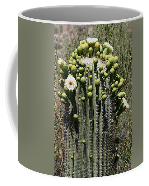 Saguaro Coffee Mug featuring the photograph Saguaro In Bloom by Joe Kozlowski