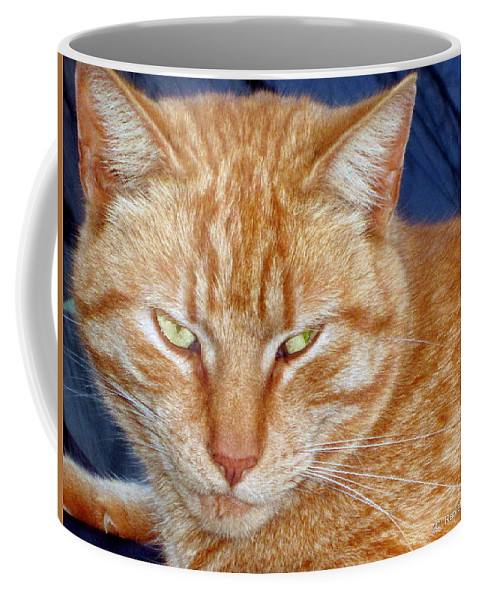 Cat Coffee Mug featuring the photograph Salem by Rabiah Seminole