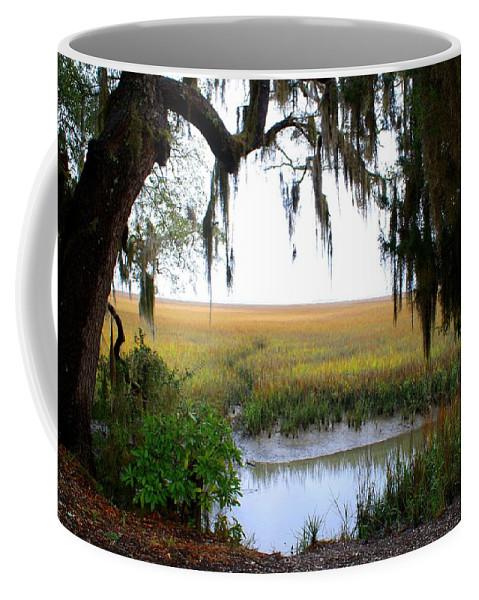 Salt Coffee Mug featuring the photograph Salt Creek 2 by Kathryn Meyer
