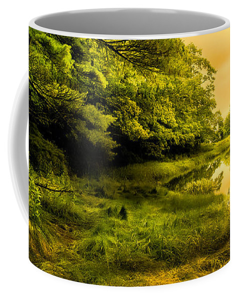 Bob Orsillo Coffee Mug featuring the photograph Salt Marsh Kittery Maine by Bob Orsillo