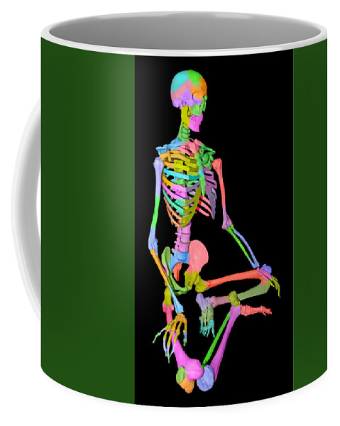Doctor's Coffee Mug featuring the mixed media Sam Shows His Colors II by Betsy Knapp