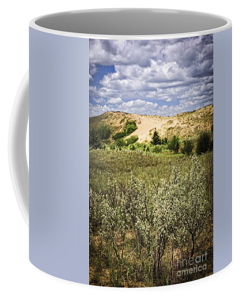 Sand Coffee Mug featuring the photograph Sand Dunes In Manitoba by Elena Elisseeva