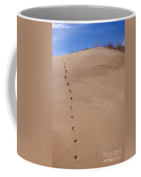 Sand Coffee Mug featuring the photograph Sand Tracks by Randy Pollard