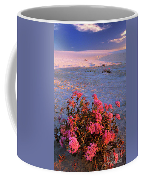North America Coffee Mug featuring the photograph Sand Verbenas At Sunset White Sands National Monument by Dave Welling