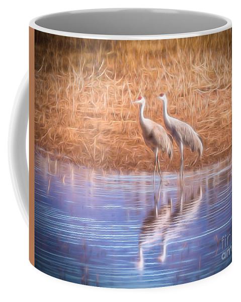Sandhill Crane Coffee Mug featuring the photograph Sandhill Crane 11 by Larry White