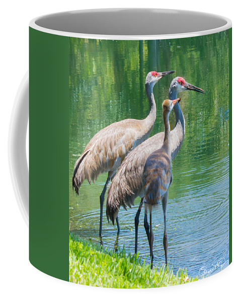 susan Molnar Coffee Mug featuring the photograph Mom Look What I Caught by Susan Molnar