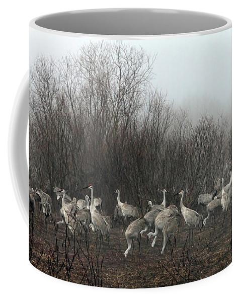 Sandhill Coffee Mug featuring the photograph Sandhill Cranes In The Fog by Farol Tomson