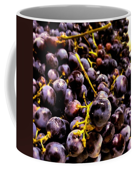 Grape Coffee Mug featuring the photograph Sangiovese Grapes by Angela Rath