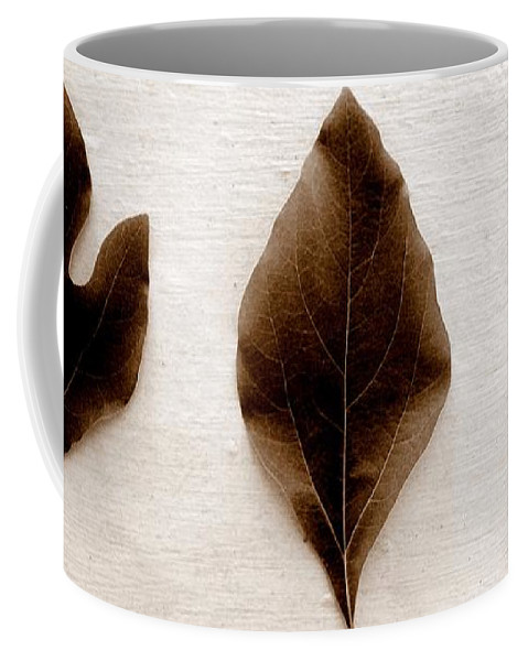 Sassafras Leaf Coffee Mug featuring the photograph Sassafras Leaves In Sepia by Michelle Calkins