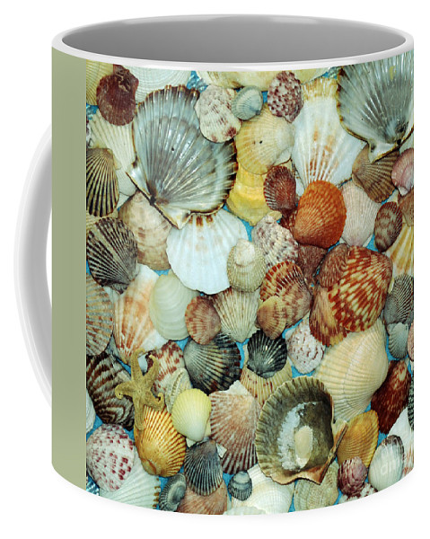 Scallops Coffee Mug featuring the photograph Scallop Shells by Kevin Fortier