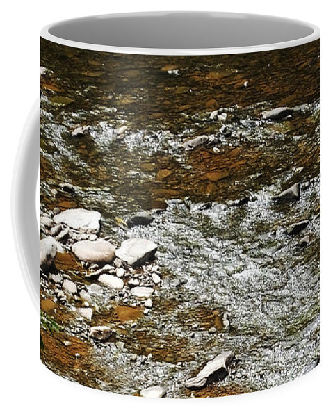 Mountains Coffee Mug featuring the photograph Schoharie Creek Lexington New York Catskill Mountains by Lizi Beard-Ward