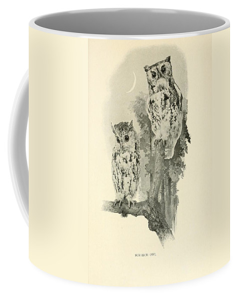 Screech Coffee Mug featuring the drawing Screech Owls by Philip Ralley
