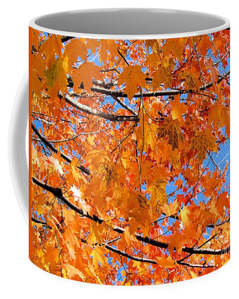 Leaves Coffee Mug featuring the photograph Sea Of Orange And Blue by Elizabeth Dow