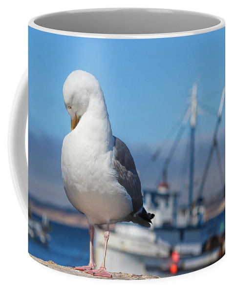 Seagull Coffee Mug featuring the photograph Seagull 3 by Becca Buecher