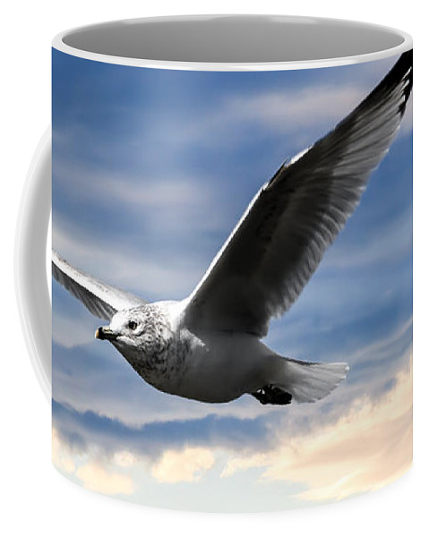 Seagull Coffee Mug featuring the photograph Seagull And Clock Tower by Bob Orsillo