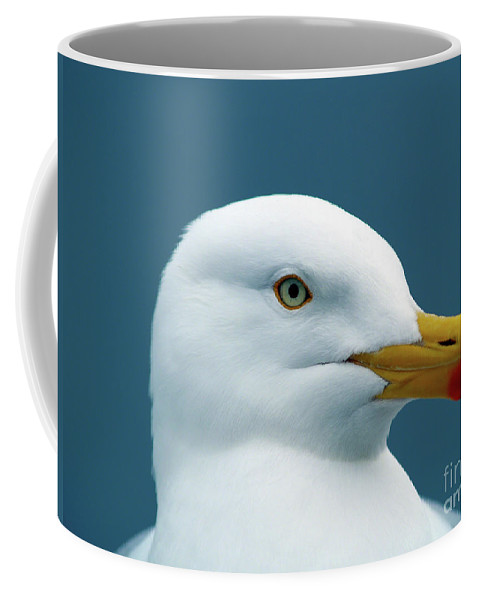 Fine Art Print Coffee Mug featuring the photograph Seagull I by Patricia Griffin Brett