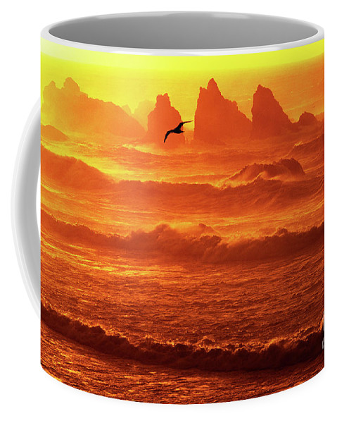 Oregon Coffee Mug featuring the photograph Seagull Soaring Over The Surf At Sunset Oregon Coast by Dave Welling