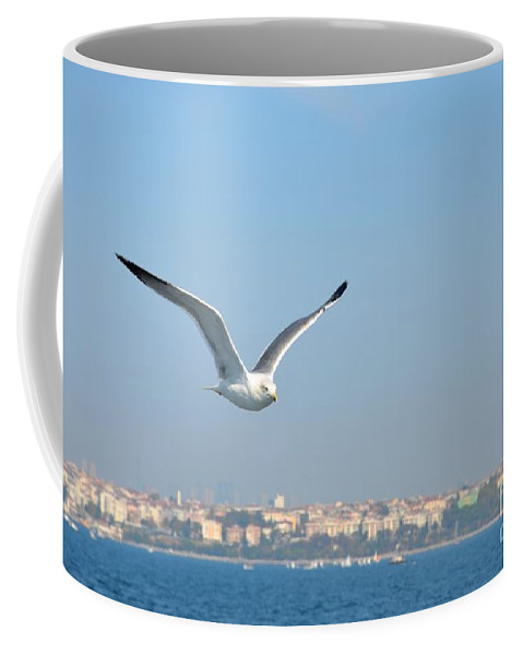 Seagull Coffee Mug featuring the photograph Seagull Soars In Breeze by Imran Ahmed