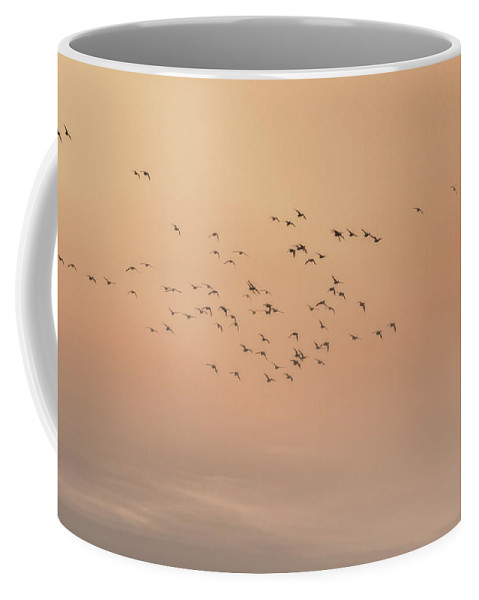 Seagulls Coffee Mug featuring the photograph Seagulls In The Mist by Beth Sawickie