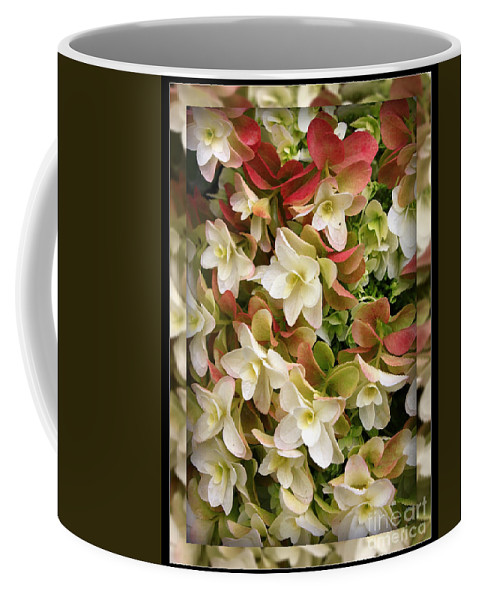 Hydrangea Coffee Mug featuring the photograph Seeing Double - Hydrangeas by Carol Groenen