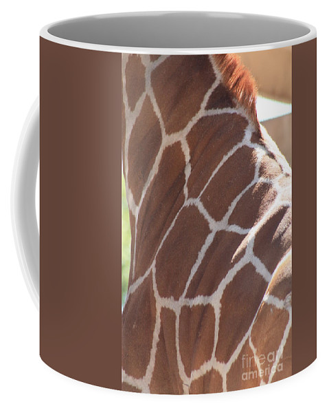Giraffe Coffee Mug featuring the photograph Seeing Spots by Brandi Maher