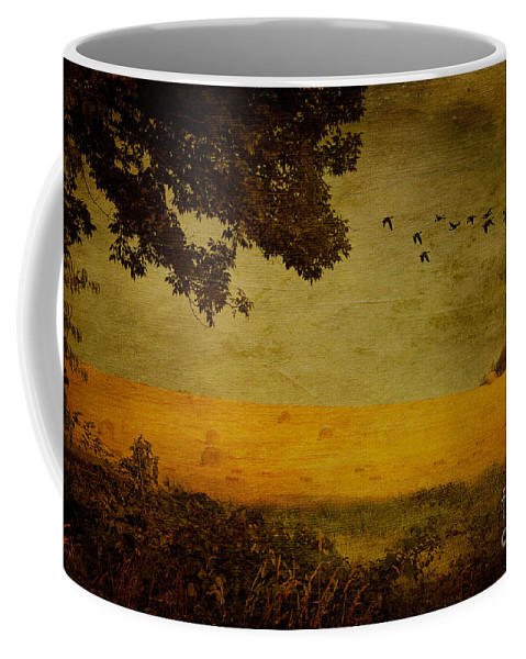 Field Coffee Mug featuring the photograph September by Lois Bryan