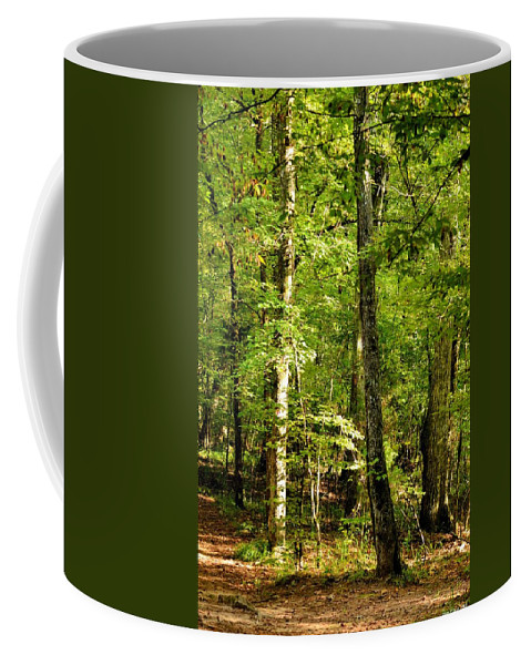 September's Woodlands Coffee Mug featuring the photograph September's Woodlands by Maria Urso