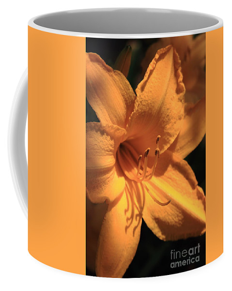 Flower Coffee Mug featuring the photograph Day Lily Shadows by Reid Callaway