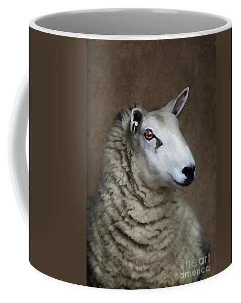 Agriculture Coffee Mug featuring the photograph Sheep by Darren Fisher