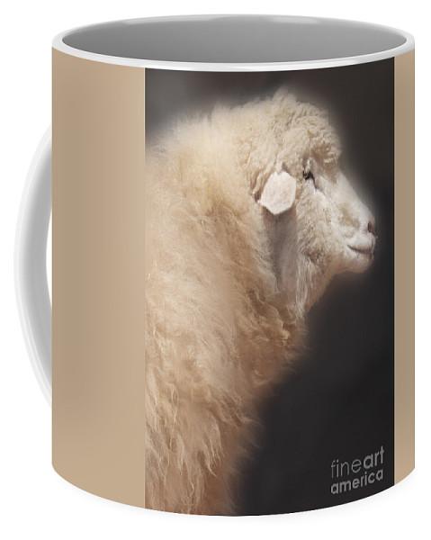 Sheep Coffee Mug featuring the photograph Sheep by Jill Battaglia