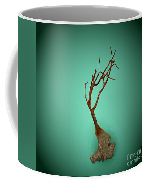 Nature Coffee Mug featuring the photograph Shell Study 3 Aqua by Skip Willits