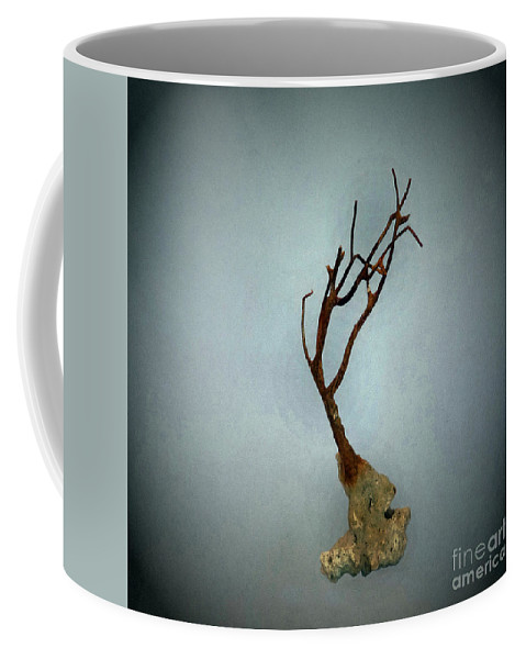 Nature Coffee Mug featuring the photograph Shell Study 3 Blue by Skip Willits