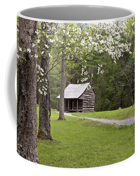 Shields Cabin Coffee Mug featuring the photograph Shields' Place by Shari Jardina