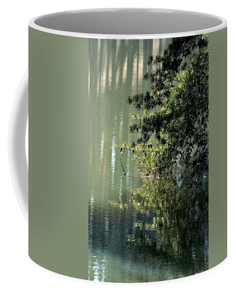 Shimmering Pine Coffee Mug featuring the photograph Shimmering Pine by Maria Urso